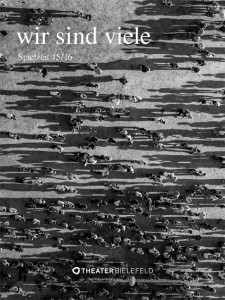 wirsindviele_sh-cover_blog